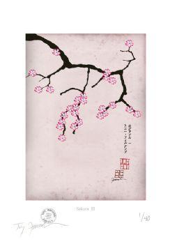 Cherry Blossom Print - Sakura 3